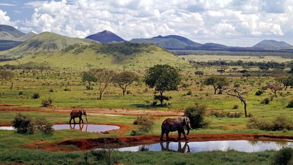 Kenya incontri di vista ex marito che esce con qualcun altro